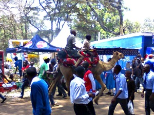 kids riding a camel